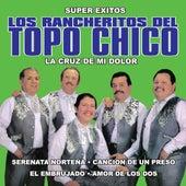 La Cruz De Mi Dolor by Los Rancheritos Del Topo Chico