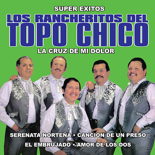 La Cruz De Mi Dolor by Los Rancheritos Del Topo Chico