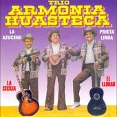 La Azucena by Trio Armonia Huasteca