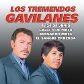 Exitos by Los Tremendos Gavilanes