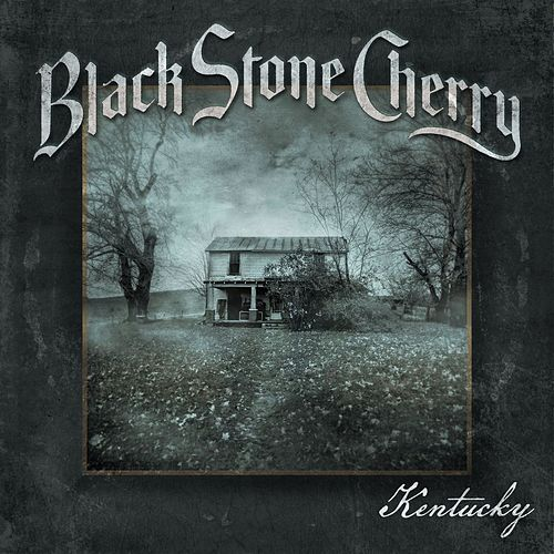 Soul Machine by Black Stone Cherry