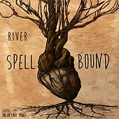 Spellbound by Tony Rivers