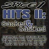Hits II: Ganked & Gaffled by Various Artists