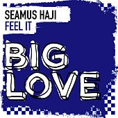 Feel It by Seamus Haji