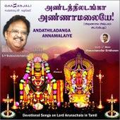 Andathiladanga Annamalaiye by S.P.Balasubramaniam
