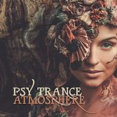 Psy Trance Atmosphere by Various Artists