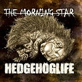 Hedgehoglife by Morning Star