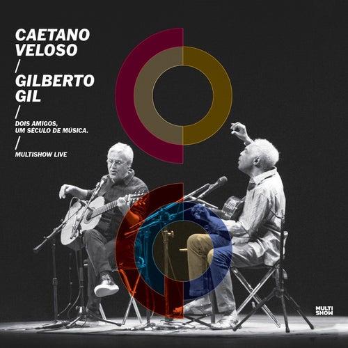 As Camélias do Quilombo do Leblon (Ao Vivo) by Gilberto Gil