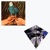 Are You Serious (Deluxe Edition) von Andrew Bird