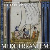 Mediterraneum by Carles Magraner