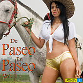 De Paseo en Paseo, Vol. 1 by Various Artists