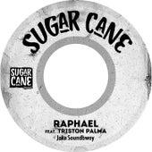 Joker Soundbwoy by Raphael