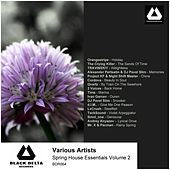 Spring House Essentials Volume 2 by Various Artists