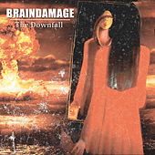 The Downfall by Brain Damage
