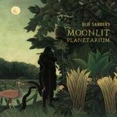 Moonlit Planetarium by Dijf Sanders