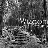 Lost Dreams by Wizdom