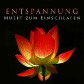 Entspannung - Musik zum Einschlafen by Various Artists