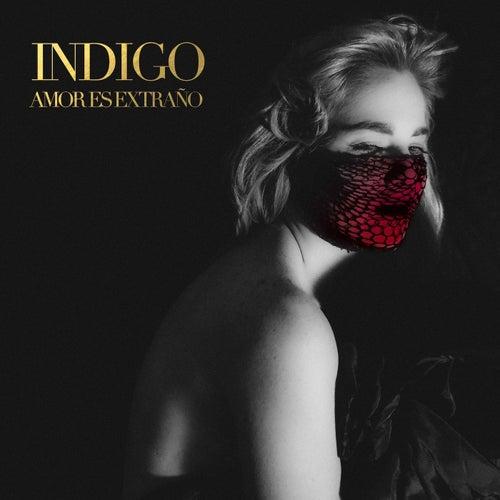 Amor Es Extraño by Indigo