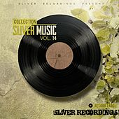 SLiVER Music Collection, Vol.14 - EP by Various Artists