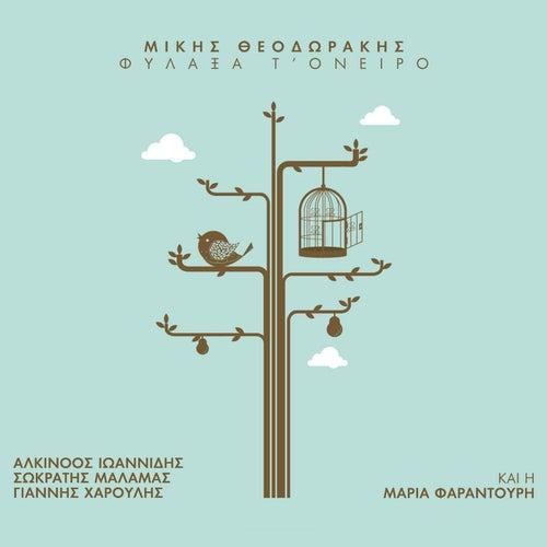 Filaxa T' Oniro [Μίκης Θεοδωράκης: Φύλαξα Τ' Όνειρο] von Various Artists