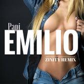 Papi (Zinity Remix) by Emilio