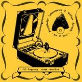 Phonometak Series #9 by Various Artists