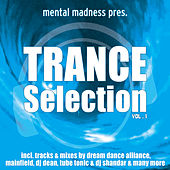 Mental Madness Trance Selection Vol. 1 by Various Artists
