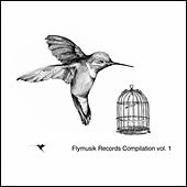 Flymusik Records Compilation, Vol. 1 by Various Artists