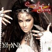 Como el Ave Fenix by Yatana