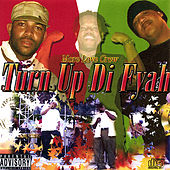 Turn Up Di Fyah by Various Artists
