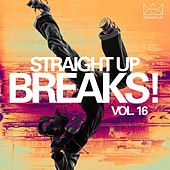 Straight Up Breaks! Vol. 16 by Various Artists