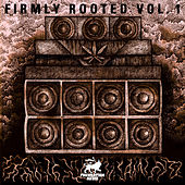 Firmly Rooted Vol.1 by Various Artists