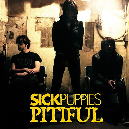 Pitiful by Sick Puppies