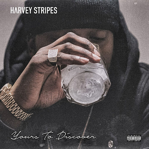 Yours to Discover by Harvey Stripes