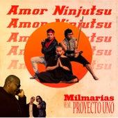 Amor Ninjutsu by Proyecto Uno