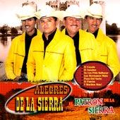 El Patron De La Sierra by Los Alegres De La Sierra