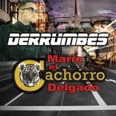 Derrumbes by Mario