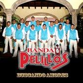 Buscando Amores by Banda Pelillos
