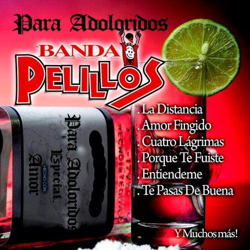 Para Adoloridos by Banda Pelillos