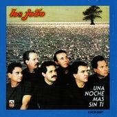Una Noche Mas Sin Ti by Los Joao