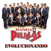 Evolucionando by Banda Pelillos