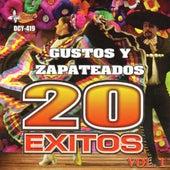 Gustos y Zapateados - 20 Exitos, Vol. 1 von Various Artists