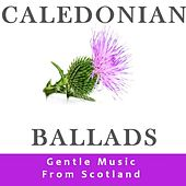 Caledonian Ballads: Gentle Music from Scotland by Various Artists