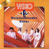 12 Desencadenados Exitos by Yndio