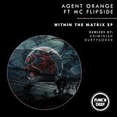 Within The Matrix (feat. MC Flipside) by Agent Orange