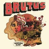 Wandering Blind by Brutus