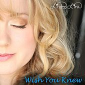 Wish You Knew by Lindee Link