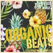 Organic Beats, Vol. 6 (Electronic Music Sampler) by Various Artists