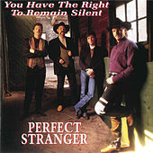 You Have The Right To Remain Silent by Perfect Stranger