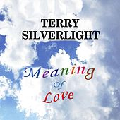 Meaning of Love by Terry Silverlight